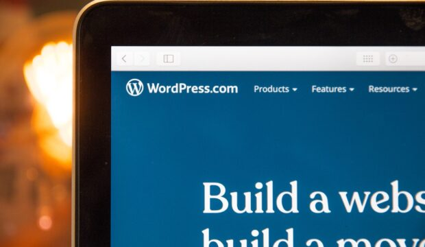 What Are WordPress Blocks?